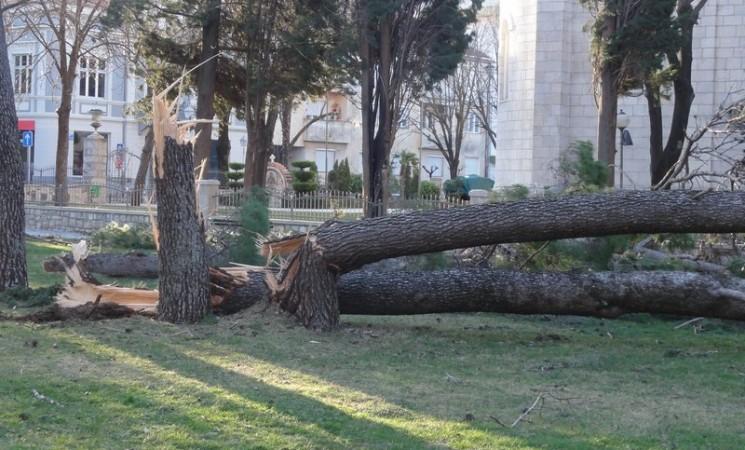 Višemilionska šteta u Trebinju nakon nevremena