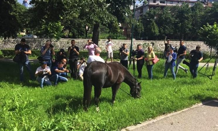 Konj pred zgradom OHR-a, okupljeni traže konkretan potez Incka