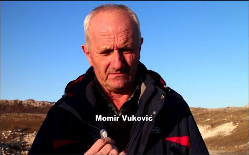 momir-vukovic
