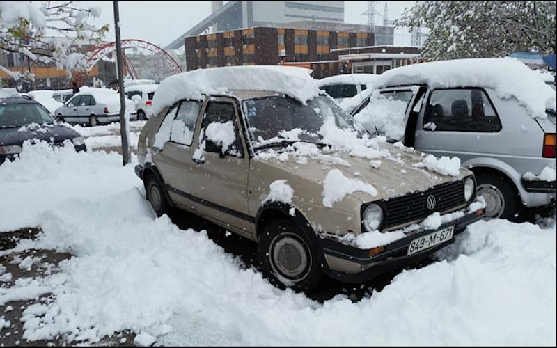 sneg-gacko