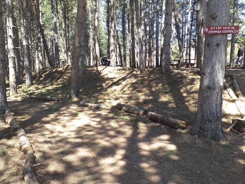 trim-staza-borovina-gacko