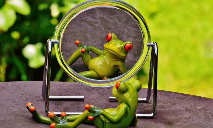 Rešenje je u ogledalu