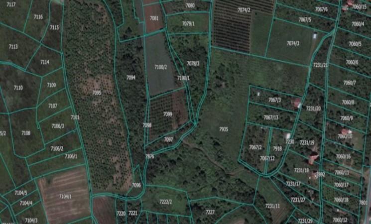 Vlasnica kompanije Galens kupila 205 parcela na Fruškoj gori