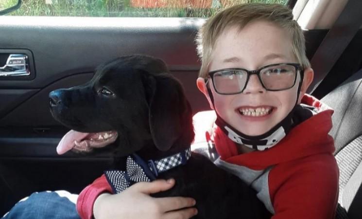 Osmogodišnjak prodao vrijednu kolekciju Pokemon karata kako bi platio liječenje psa